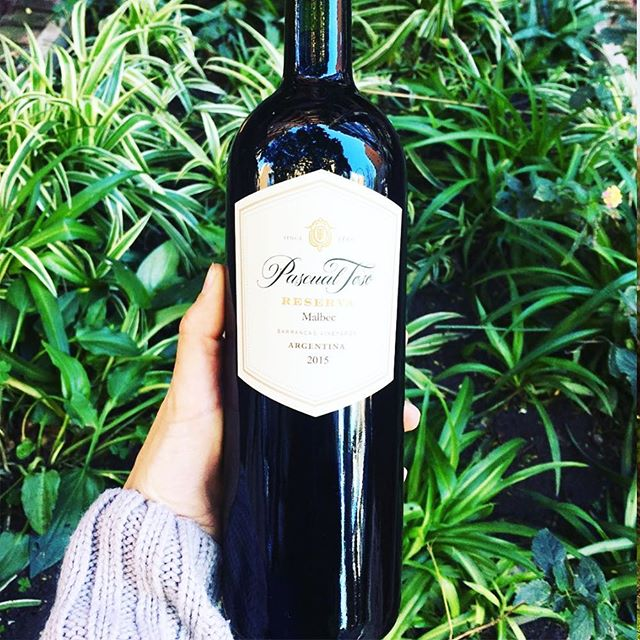 Pascual Toso Wines Argentina, one of the oldest vineyards in Argentina, is one of our favorites! #SouthAmerica #ProjectKaif 📷: @shairachavero