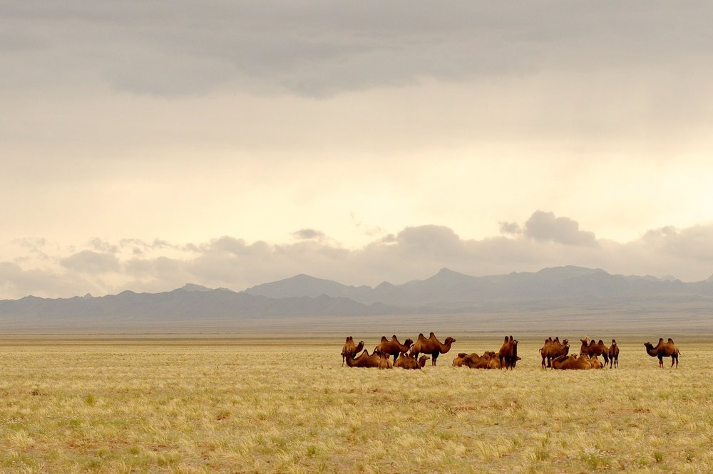 Mongolia Off the Beaten Path Honeymoon.jpg