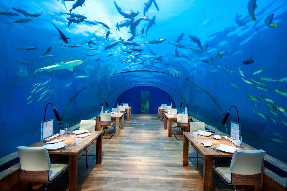 Ithaa Maldives.jpg