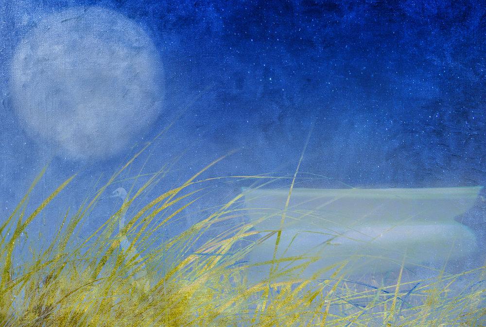 Karla Bernstein_One Night I Dreamed...Voyages_5.jpg