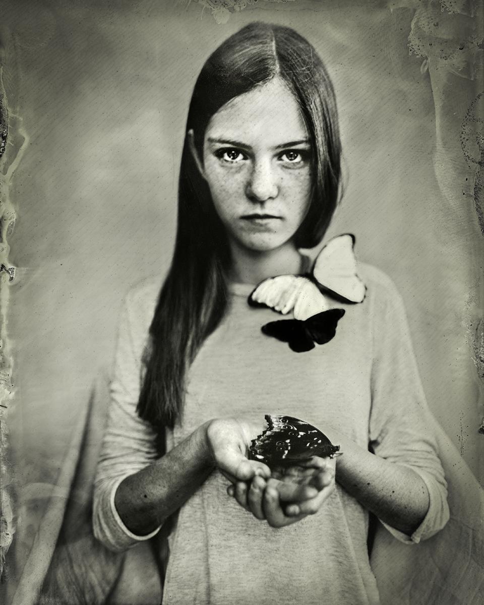 Christine Fitzgerald_Threatened_Danaus plexippus.jpg