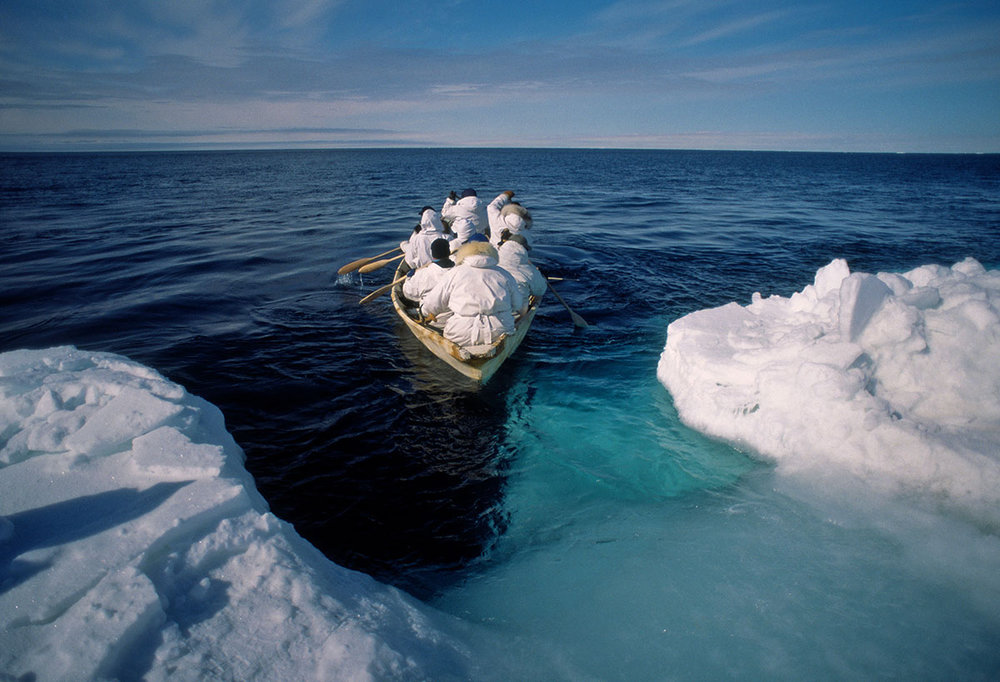 Luciana Whitaker _ People of the Ice _ Whaling on a Traditional Inupiat Eskimo Skin Boat.jpg