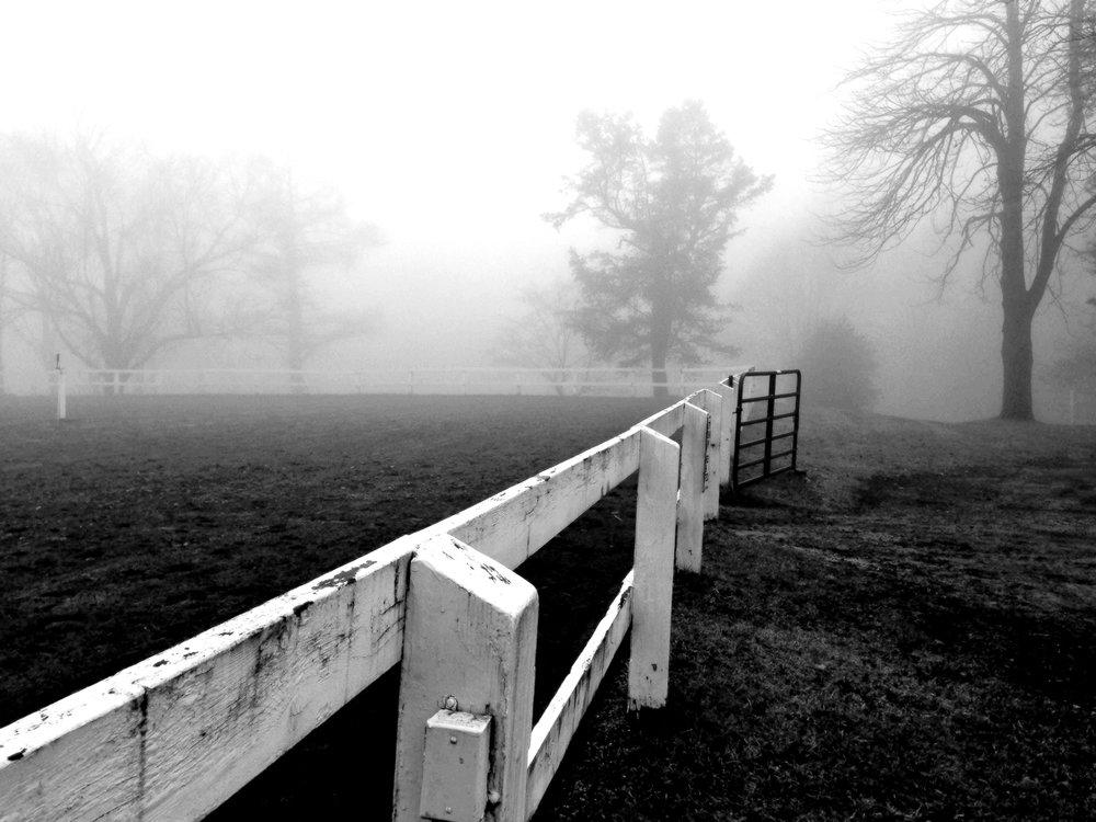 Alexandria Donovan _ Fog Beyond.jpg