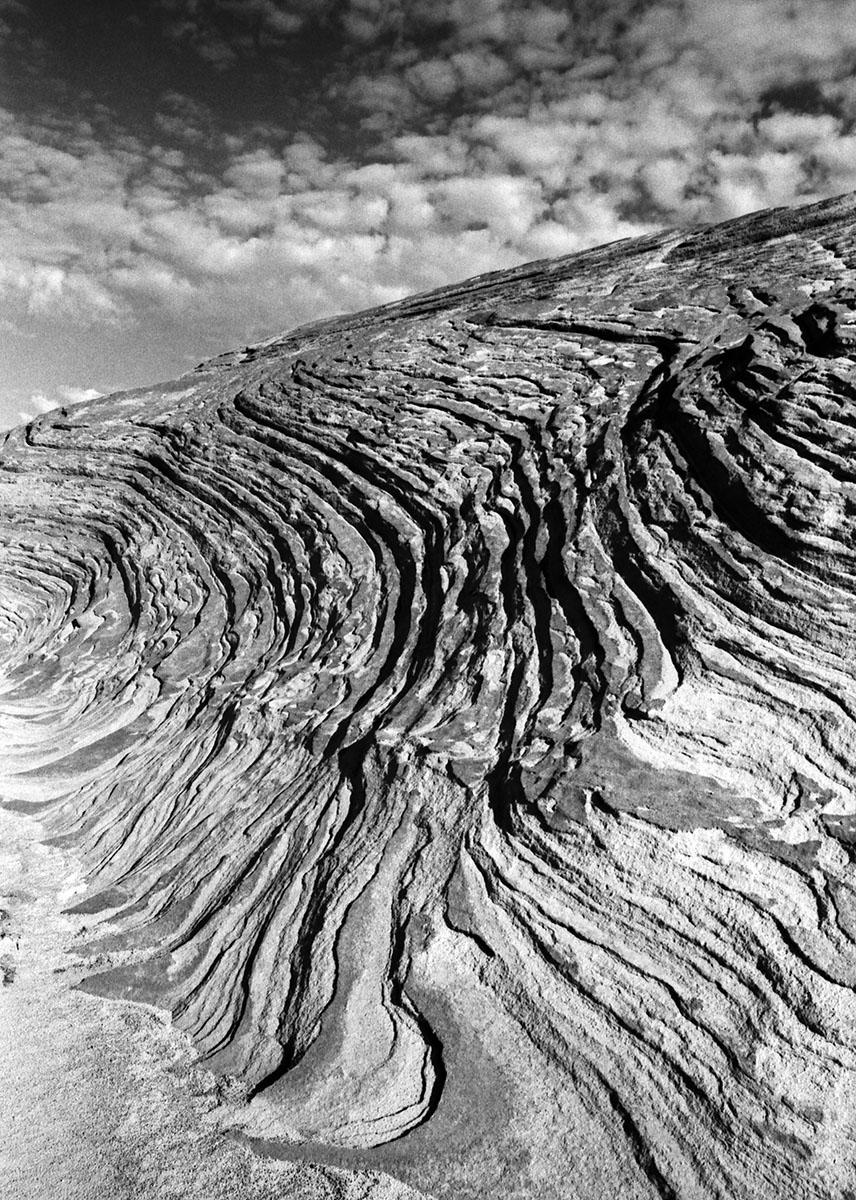 PatriciaGilbertson_landscape1.jpg