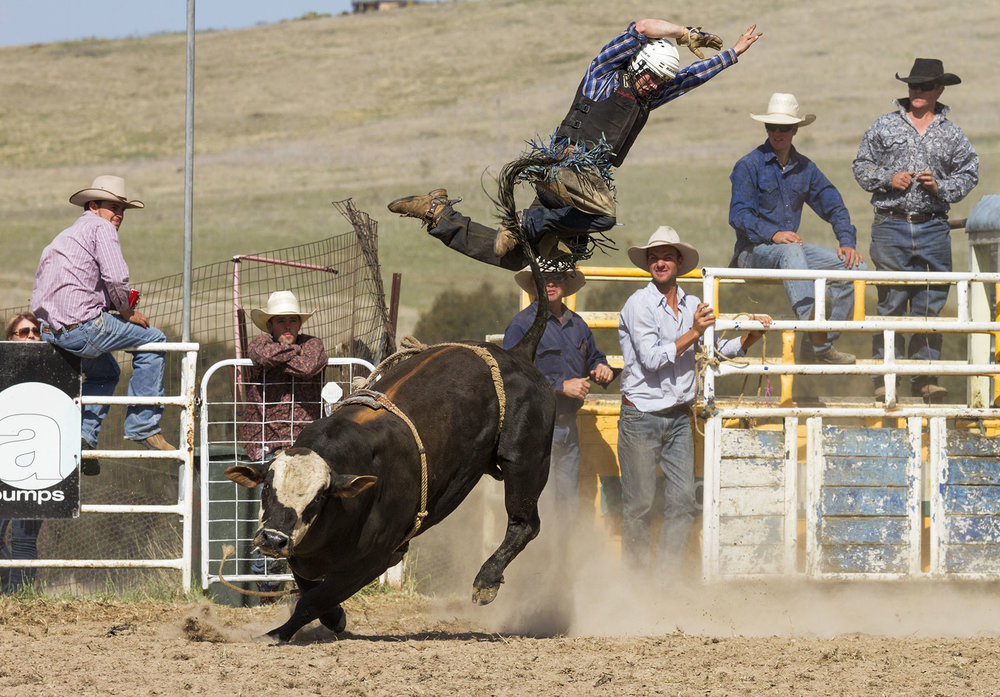 BrianJones_Rodeo Bull Riding_Bull Riding 2.jpg