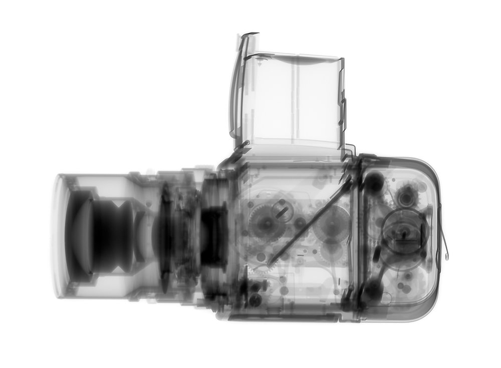 Kent Krugh_Speciation_Hasselblad 500CM.jpg