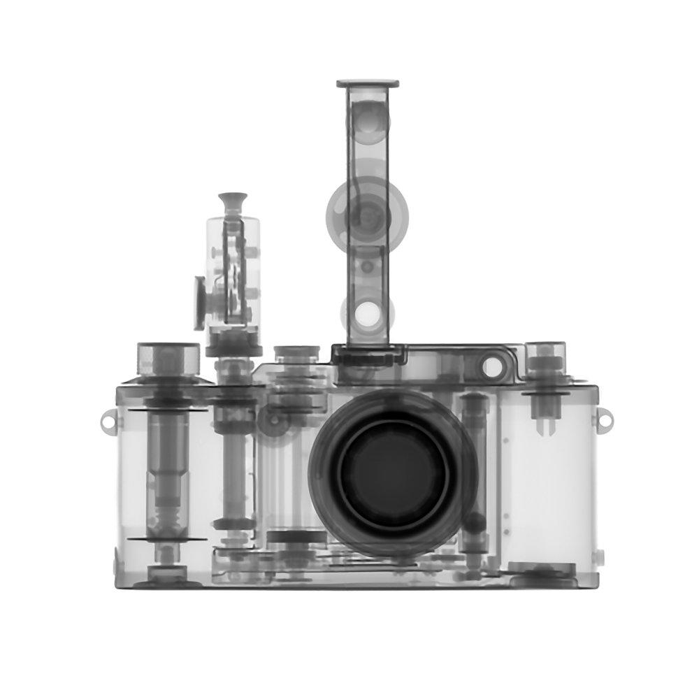 Kent Krugh_Speciation_Leica IIIc.jpg