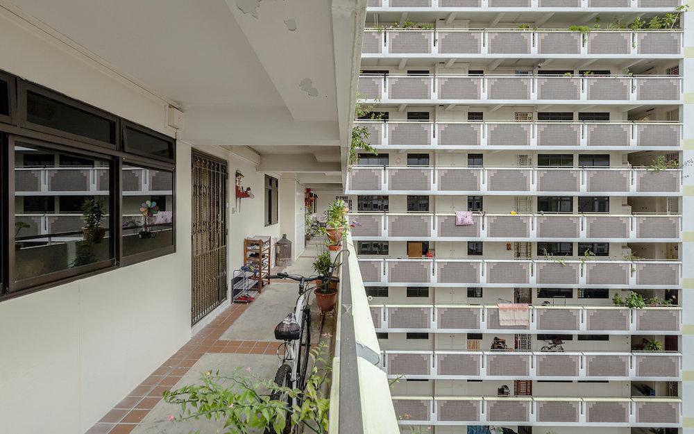 Siyuan Ma_(Corridors of Diversity)_01.jpg