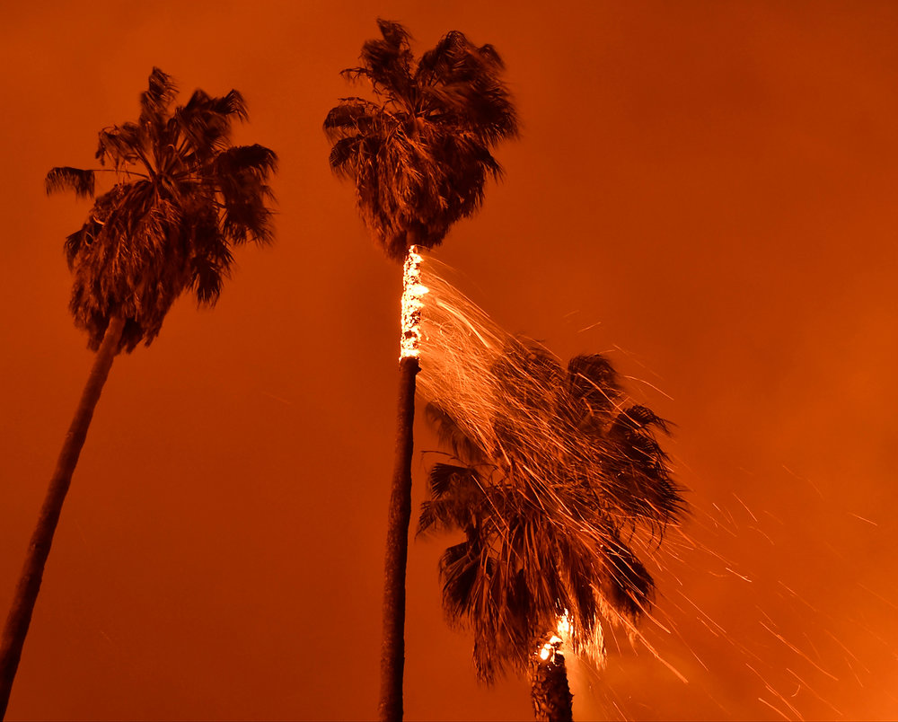 Gene Blevins_California Wildfires-Thomas Fire_02.jpg