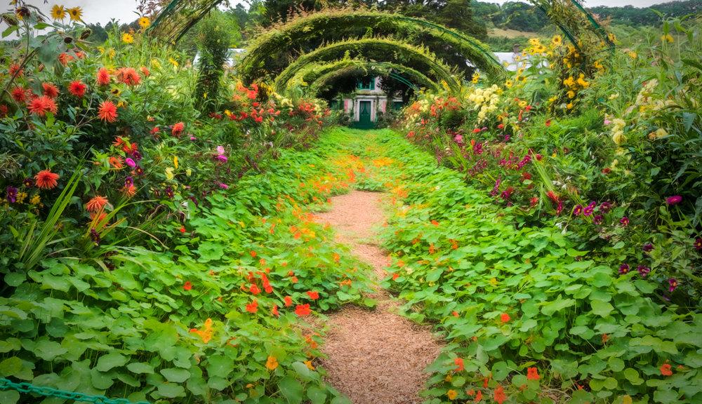 Diane Kravetz_The Garden.jpg