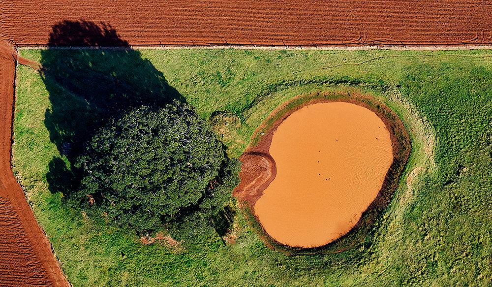 Stuart Chape_Water hole.jpg