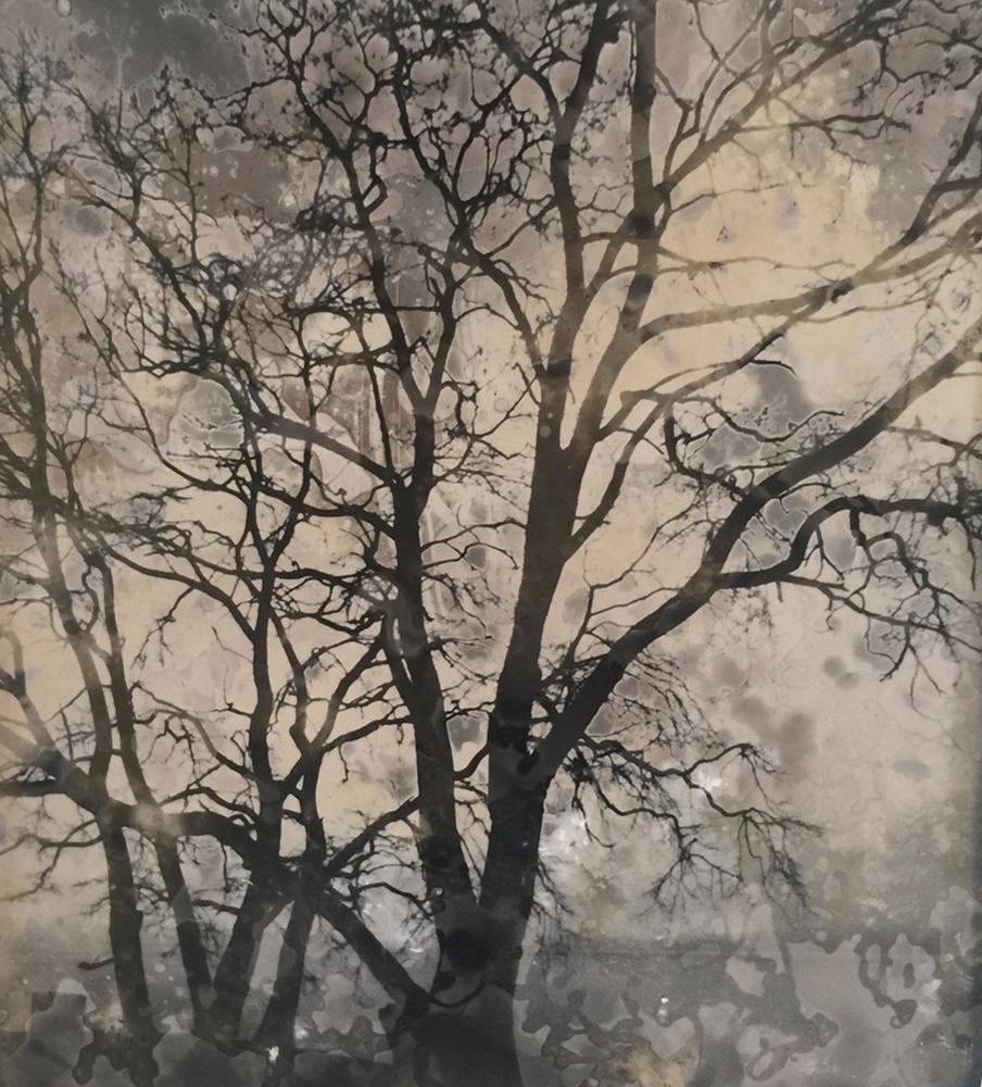 Jane Olin Intimate Conversation 13 (Landscape of Memory).jpg