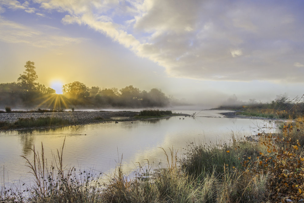 MicheleMcCormick_American River Sunrise.jpg
