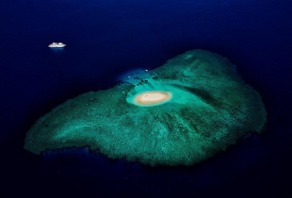 Stuart Chape_Coral reef series 1_Arrival.jpg
