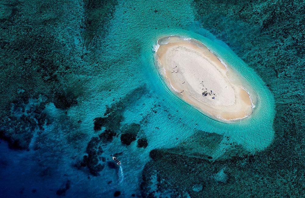 Stuart Chape_Coral reef series 2_Nukuimana Reef.jpg