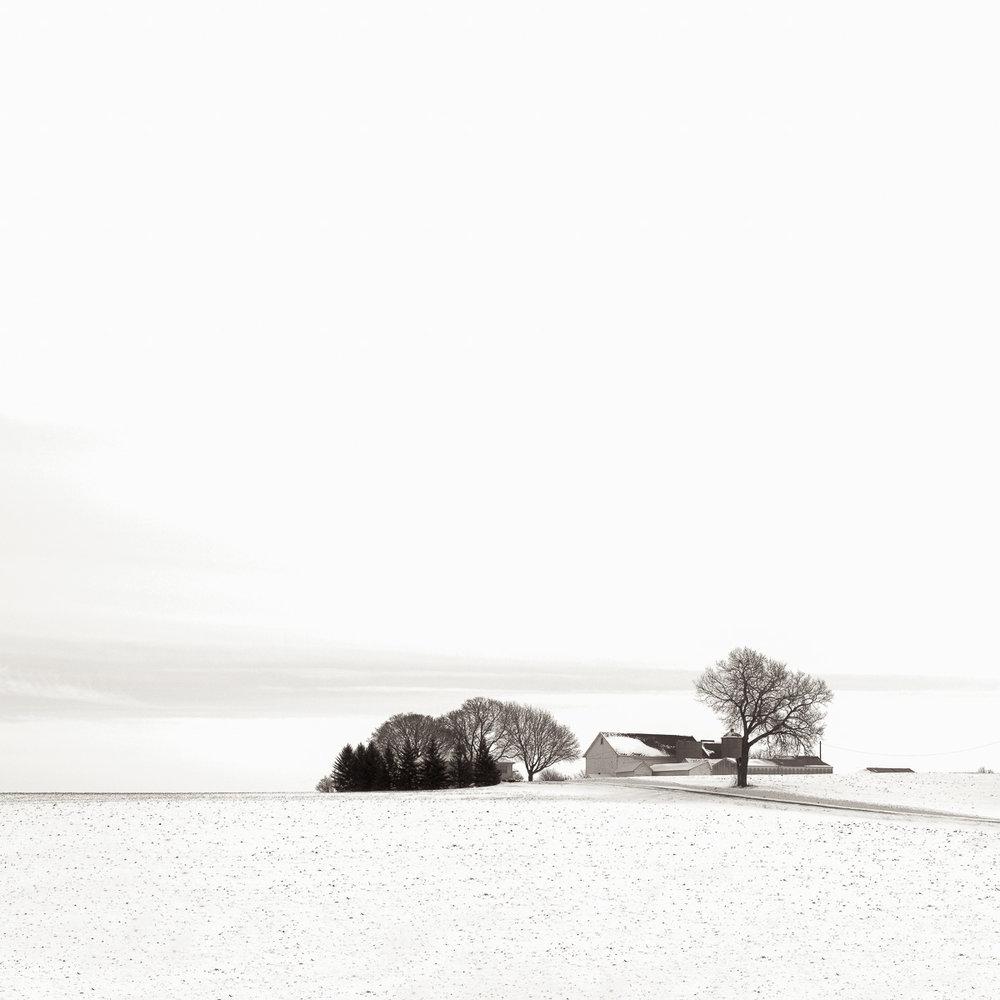 MichaelKnapstein_Winter_Winterscape.jpg