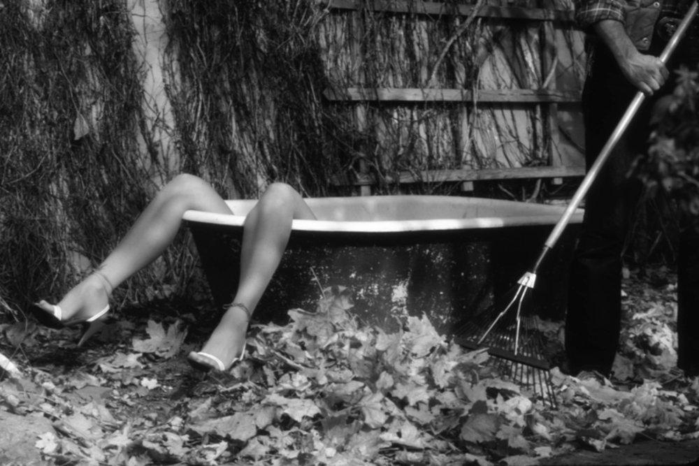 Dick Nosbisch_LEGS AND LEAVES .jpg