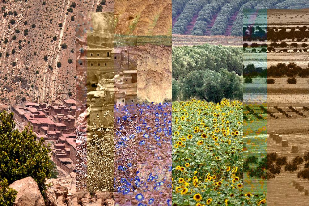 Linda Briskin_Landscape Imagined(iii).jpg