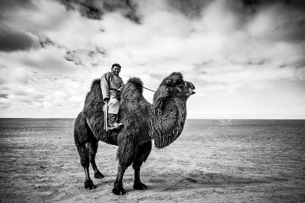 ShirrenLim_CamelPoloPlayer.jpg