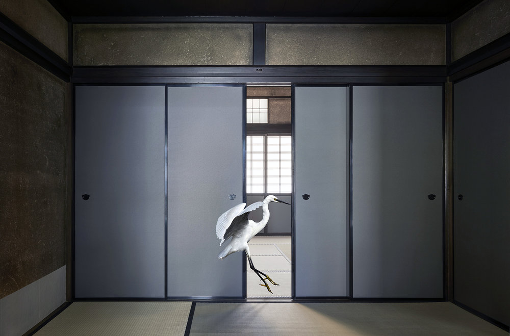 Karen KNORR_OnceOnly.jpeg