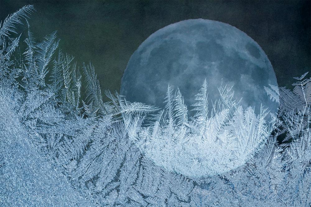 GailFoster_Blue Moon.jpg
