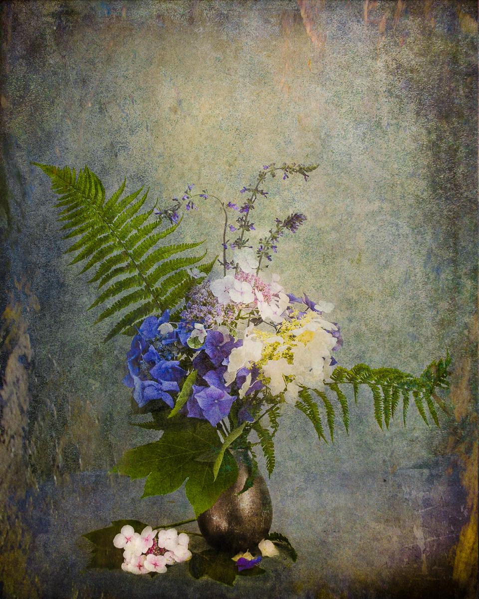 NancyAbens_BouquetSeries-HydrangeaandFern.jpg