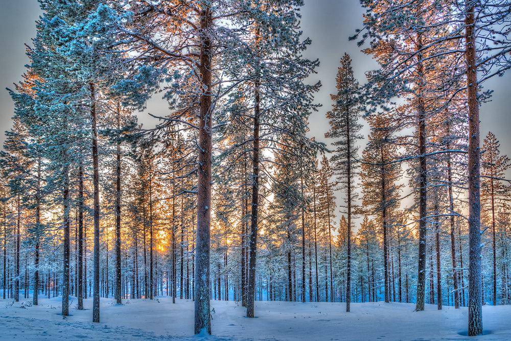 Roberta Kayne_Sunset in Riisitunturi Finland.jpg