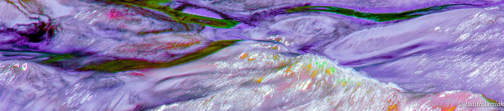 JLoniak-Lavender.jpg