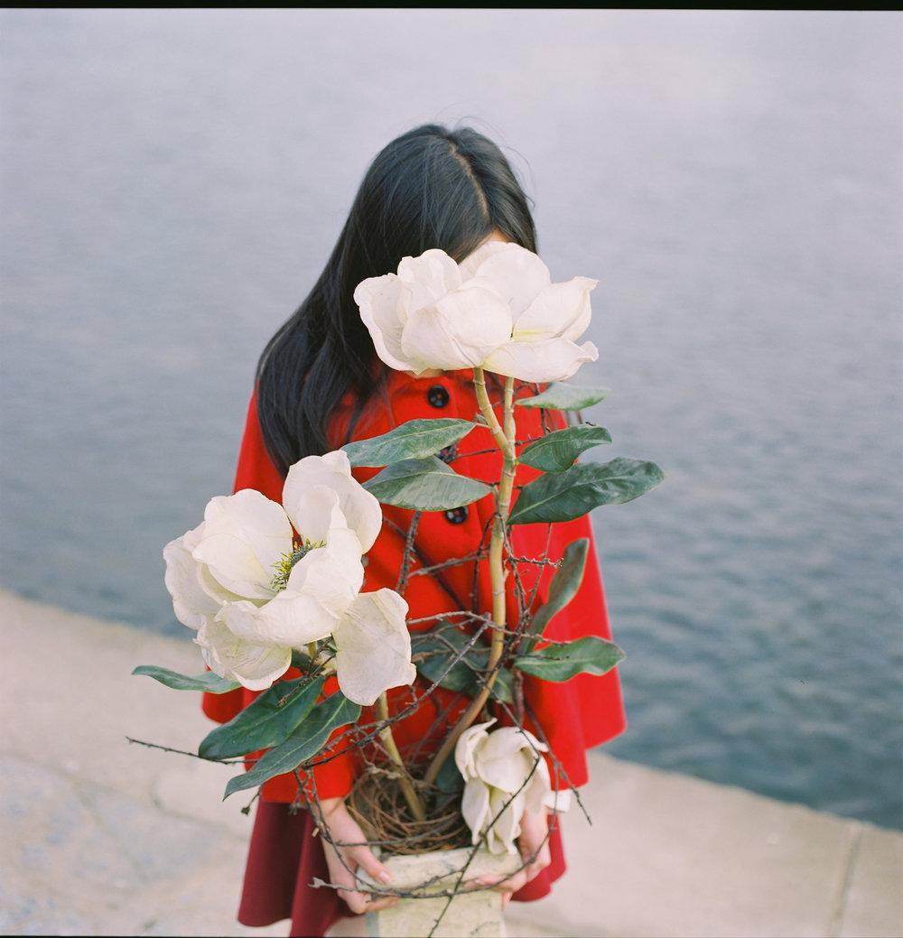 Hui Yi_Hiding behind the magnolia.jpg