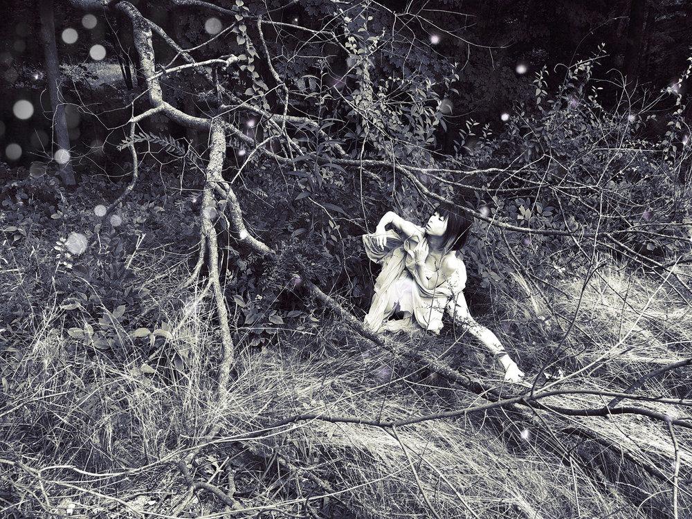 Ryn_Clarke_Bird in the Bush.jpg