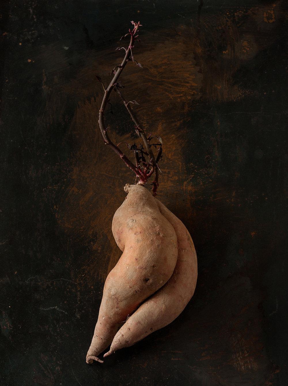 52_Beth_Galton_Amour_de_Pomme_de_Terre_Garnet_Sweet_Potato_15days-a_3.jpg