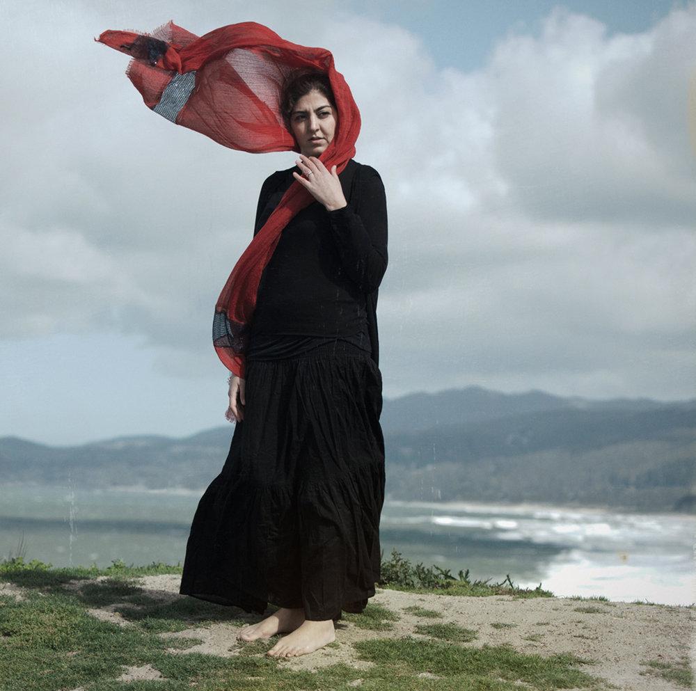 Susan_ Friedman_The edge of forever_ Leili.jpg