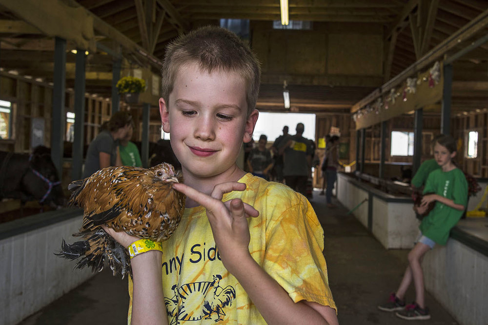 Steven_Edson_The County Fair_10.jpg