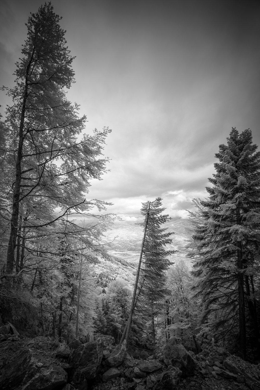 Pepe_Pax_From the Belasica Mountain Range.jpg