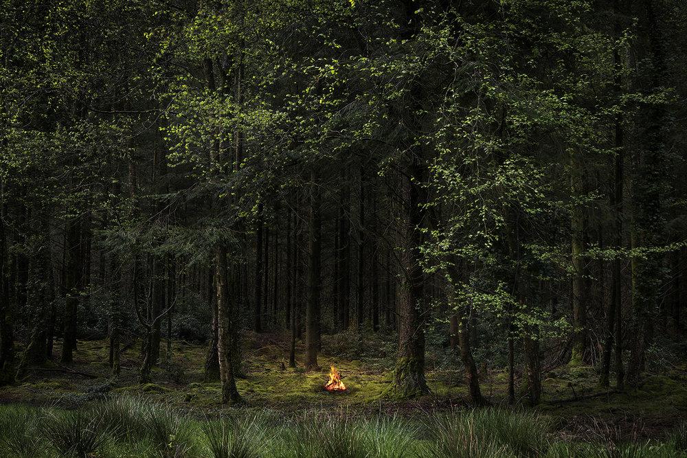 Ellie_Davies_Fires 8, 2018 lighter for press.jpg
