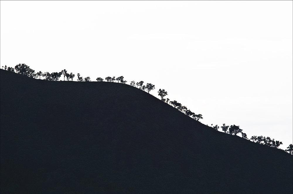 Carlos_Esguerra_Coron Silhouette-6303.jpg
