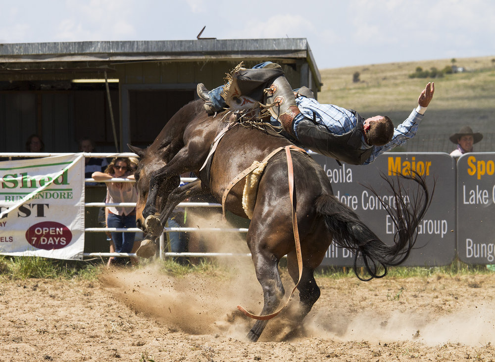 Brian_Jones_Rodeo Thrills and Spills_Bareback 1_3.jpg