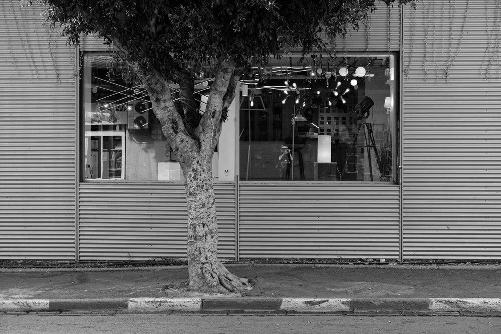Haim_Blumenblat_Shopping Windows_Lights_2.jpg