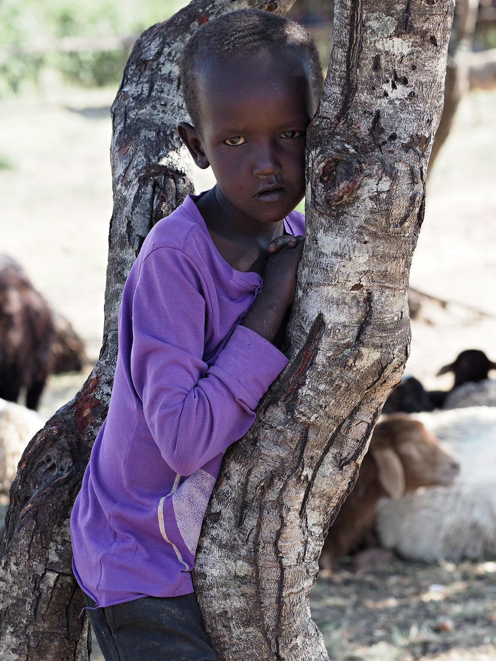 Ranjan_Ramchandani_The shepherd boy.jpg
