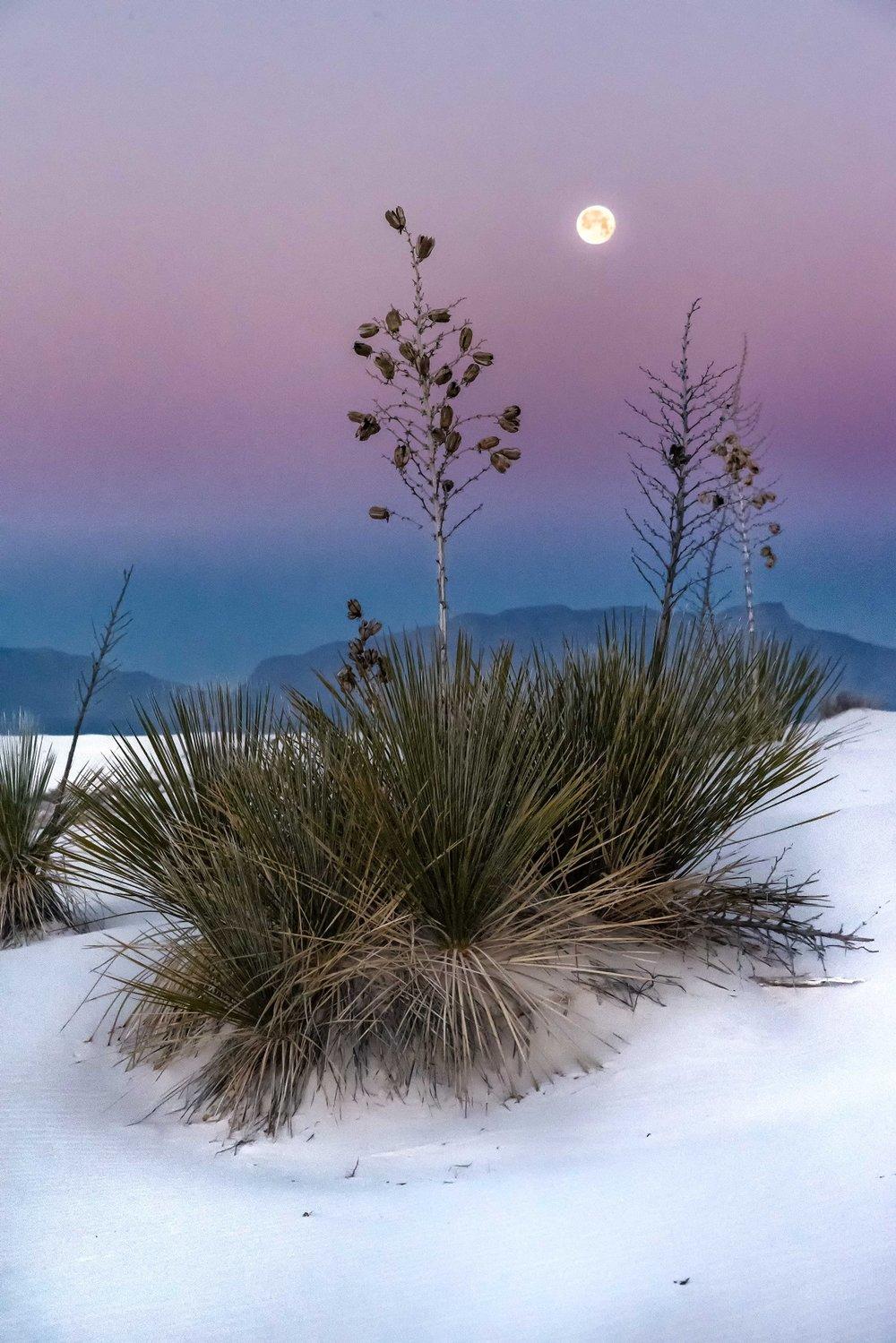 Kathleen Gerber- Moonset at White Sands.jpg