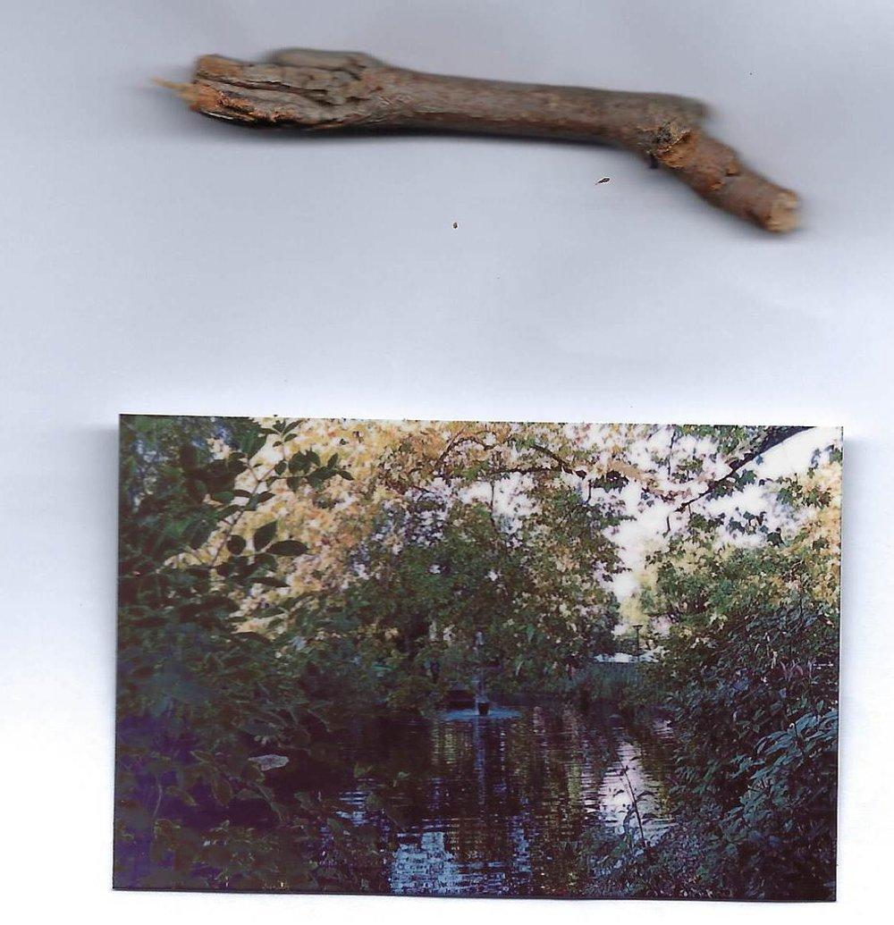 photo 19 et élément 8.jpg
