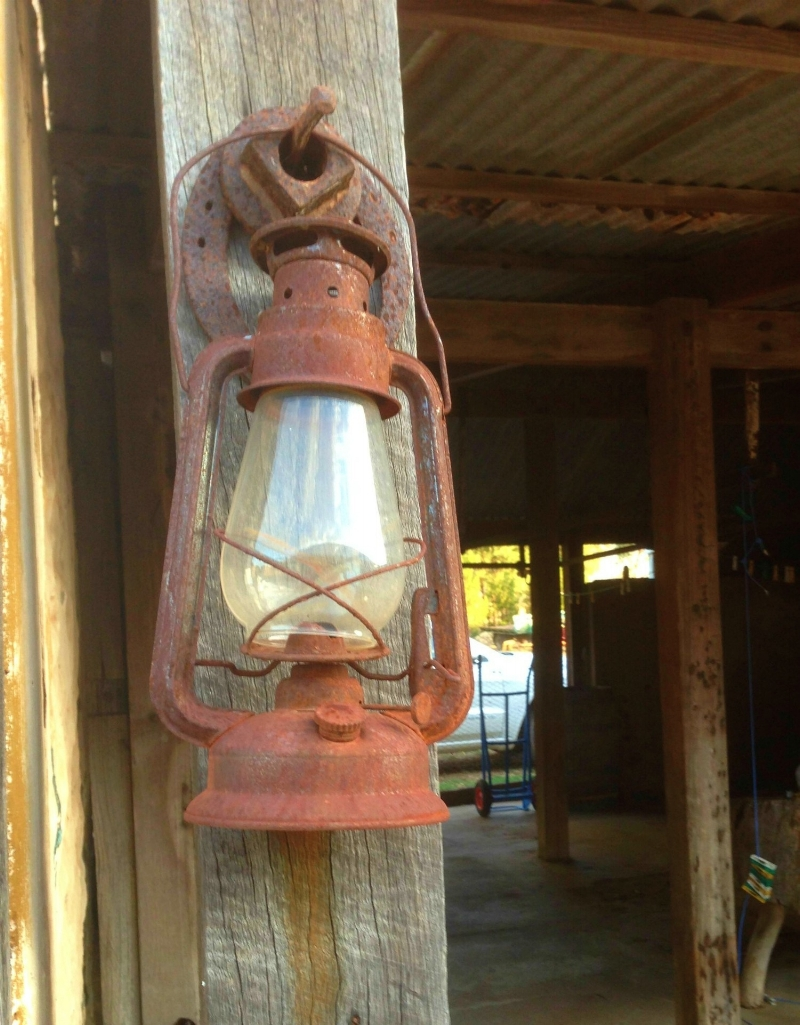 lamp against wood - resized.jpg