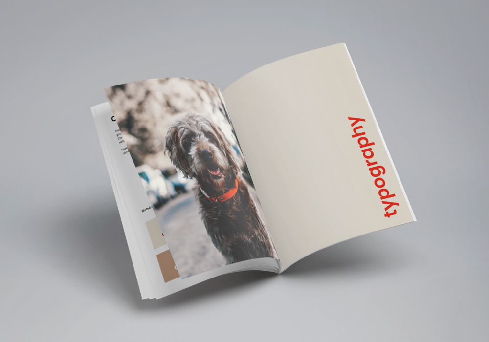 anaxeos-brand-book-mockup.png