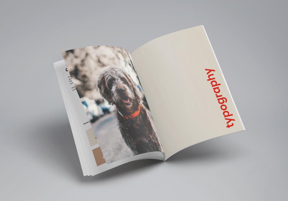 anaxeos-brand-book-mockup.png
