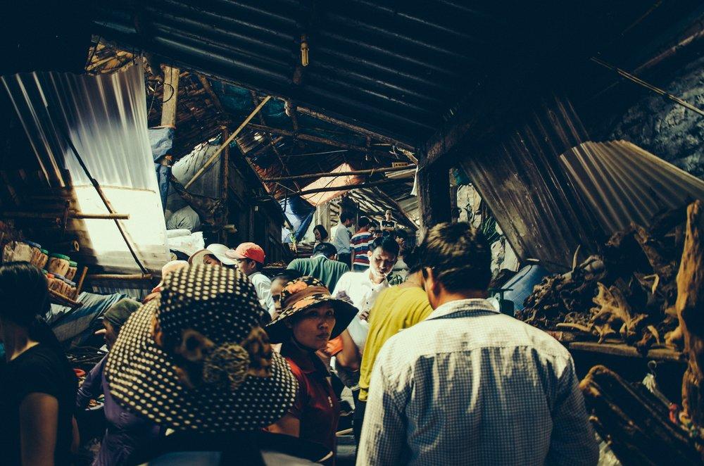 Photo by Anh Nguyen on Unsplash.jpg