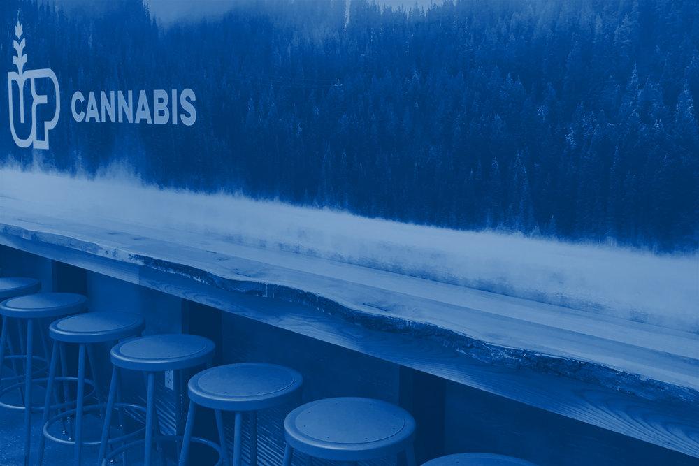 Up Cannabis -