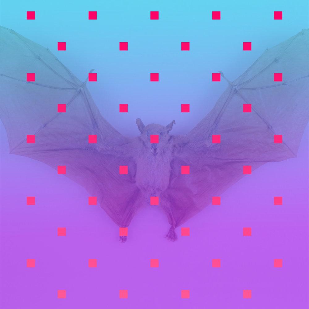 Nagel's Bat   2015  JPG