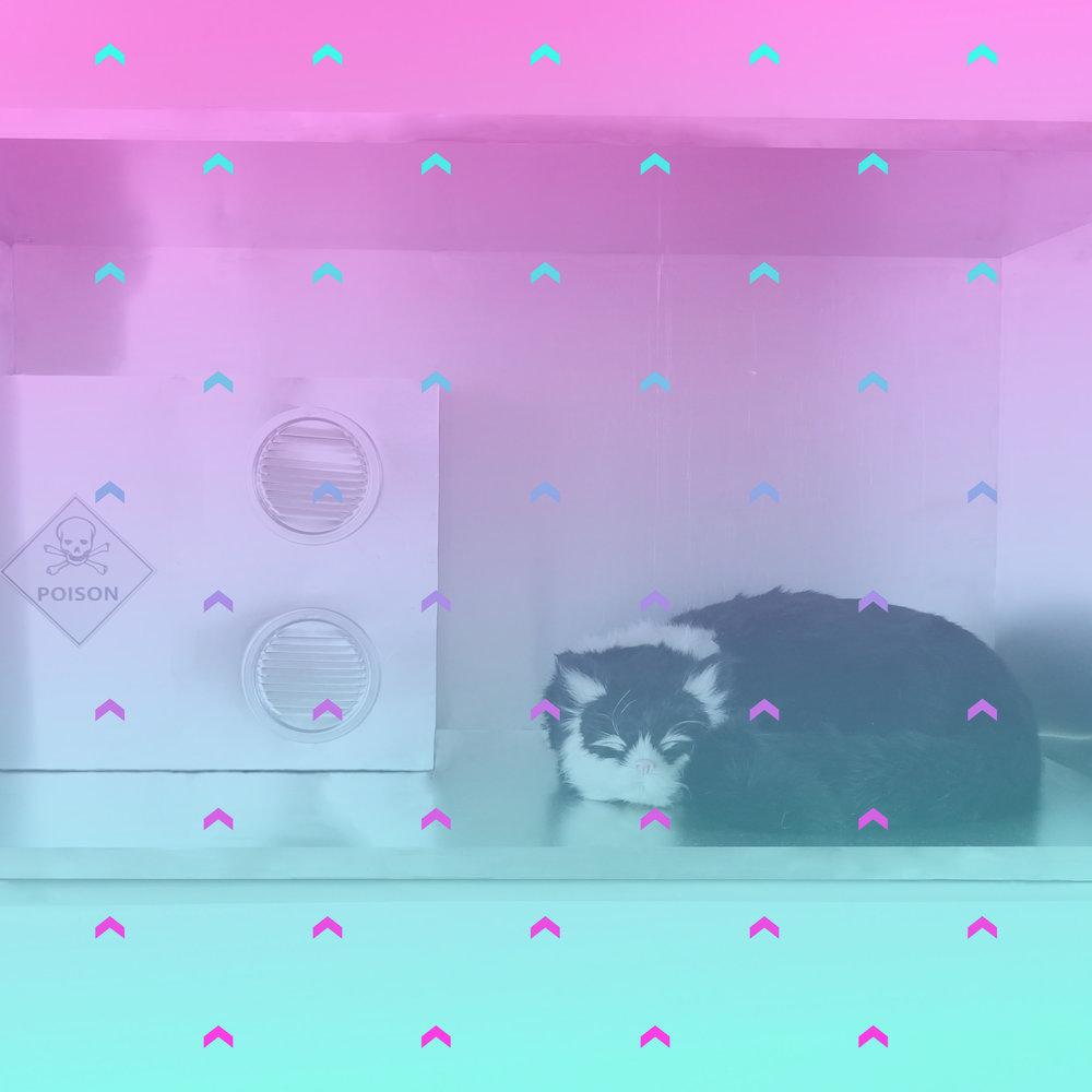Schrödinger's Cat   2015  JPG