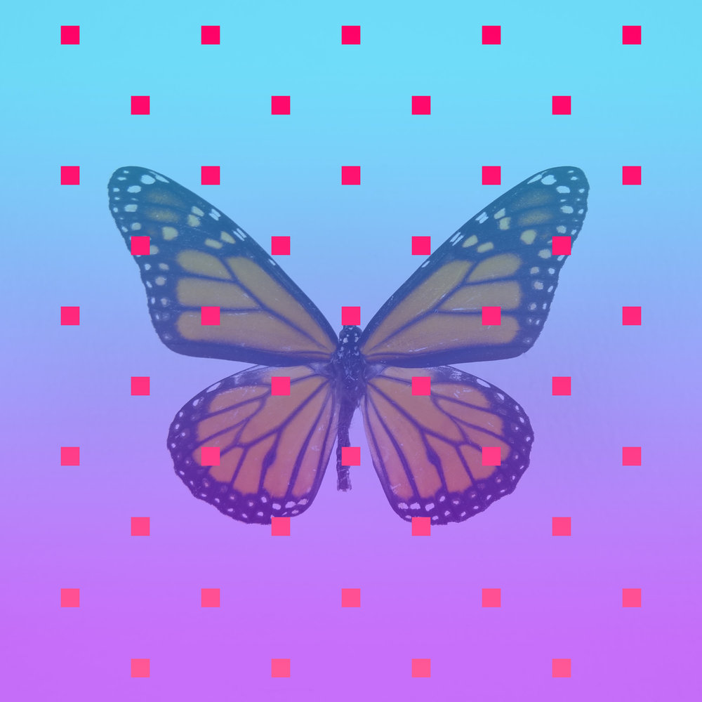 """Zhuangzi's Butterfly Dream   2015  JPG  """"Once upon a time, I, Zhuangzi, dreamt I was a butterfly, fluttering hither and thither, to all intents and purposes a butterfly. I was conscious only of my happiness as a butterfly, unaware that I was Zhuangzi. Soon I awakened, and there I was, veritably myself again. Now I do not know whether I was then a man dreaming I was a butterfly, or whether I am now a butterfly, dreaming I am a man. Between a man and a butterfly there is necessarily a distinction. The transition is called the transformation of material things."""" - Zhuang Zhou,  Zhuangzi,  476–221 B.C.E."""