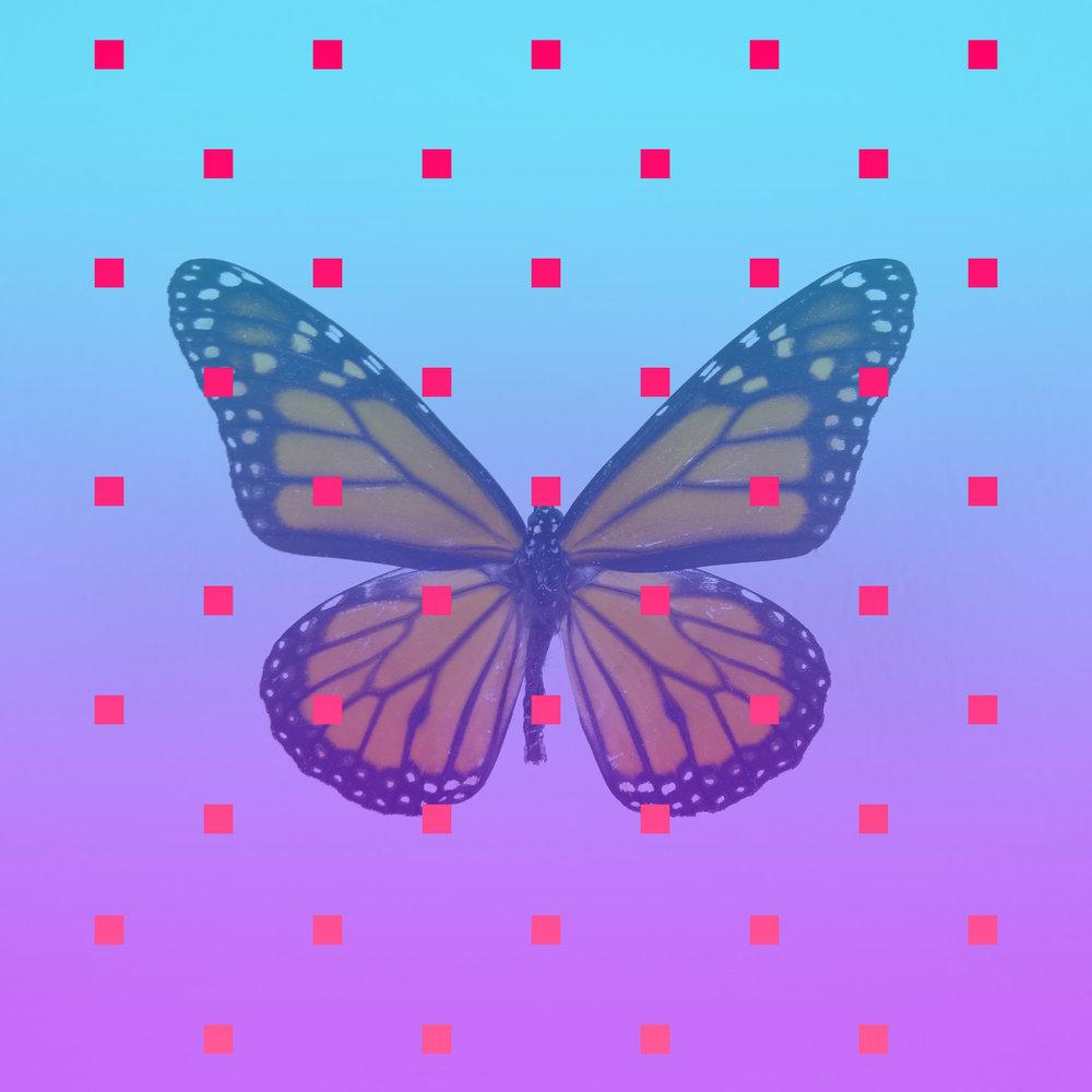 Zhuangzi's Butterfly Dream   2015  JPG
